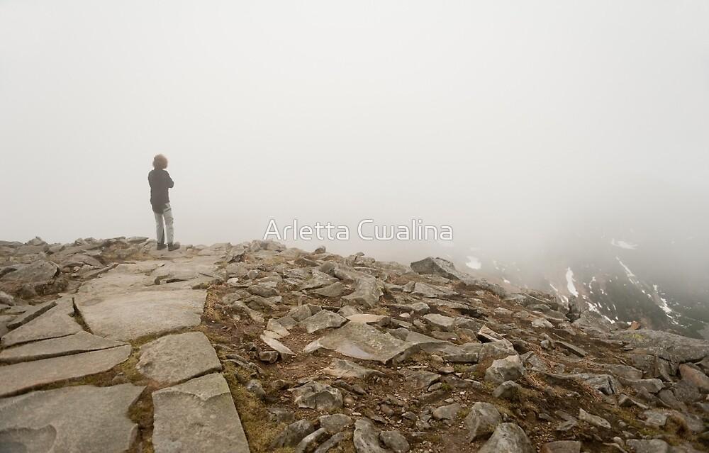 Woman standing in fog on peak by Arletta Cwalina