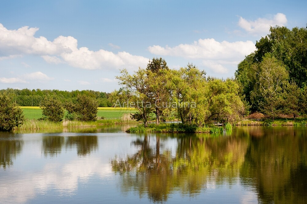 Lake and trees rural landscape by Arletta Cwalina