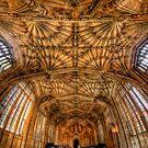 Divinity School Ceiling Vertorama   by Yhun Suarez