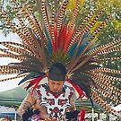 Fabulous Feathers! by Heather Friedman