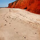 Footprints by Robyn Lakeman
