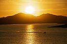 Sunset Ski on Lake Kaweah by Helen Vercoe