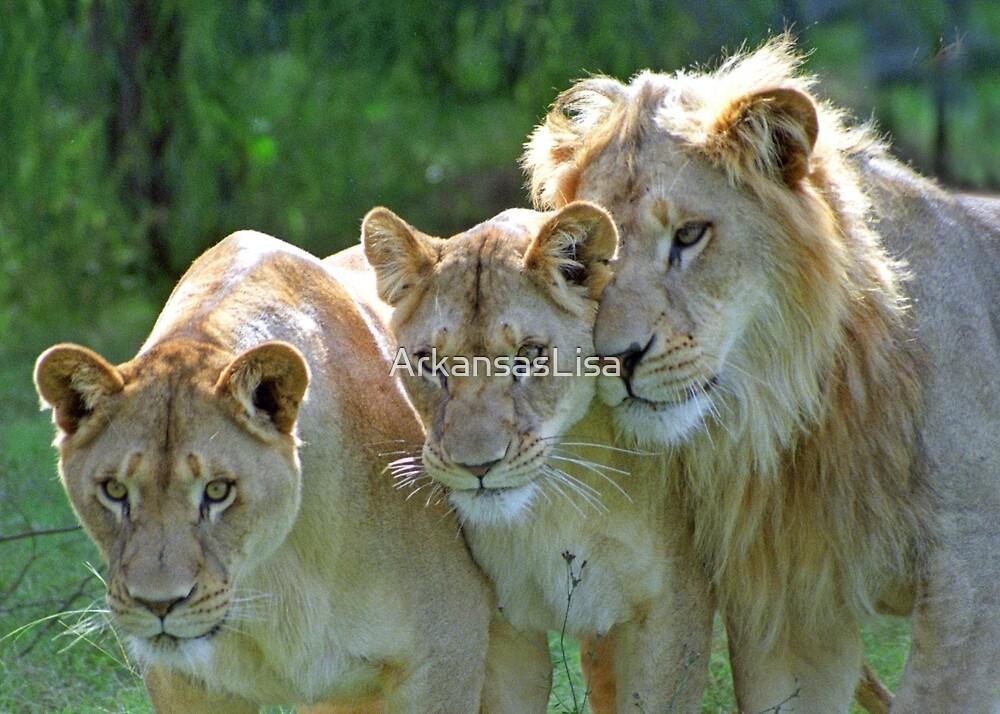The Family Portrait by ArkansasLisa