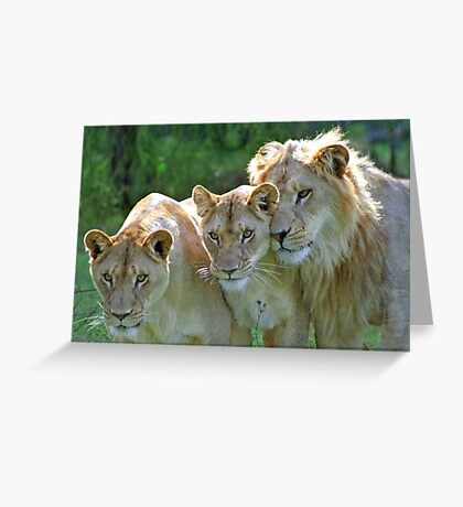 The Family Portrait Greeting Card