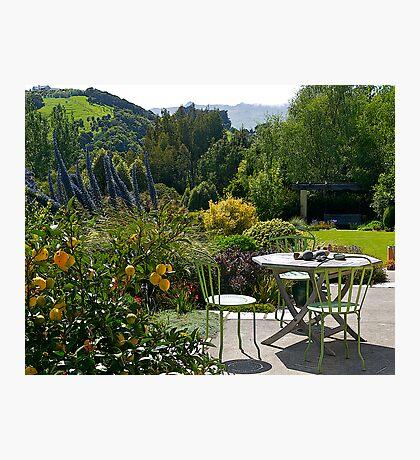 Garden, French Farm, Banks Peninsula, New Zealand. Photographic Print