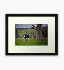 Rural South Australia. Framed Print