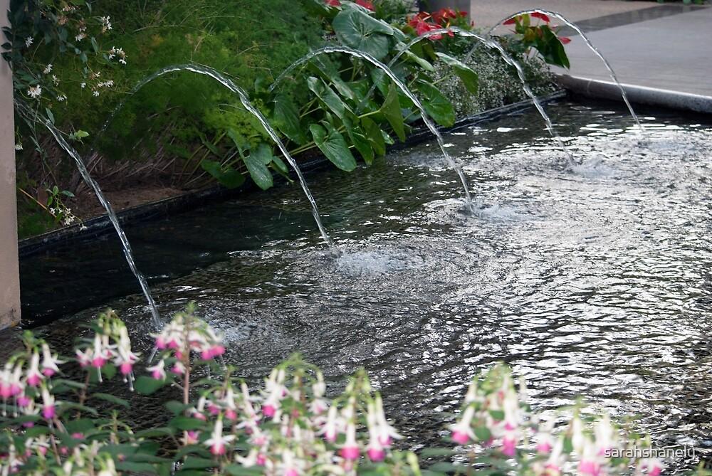 Longwood Gardens - Spring Series 11 by sarahshanely