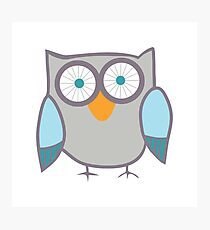 Cute Owl Blue Grey Photographic Print