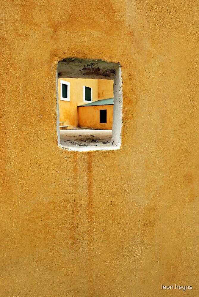 Looking In by Leon Heyns