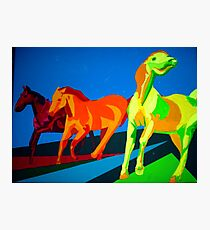 Mustangs of the Western Part of the USA Photographic Print