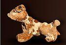Pet Rock by Alex Preiss