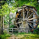 Waterwheels by Farah  Rose