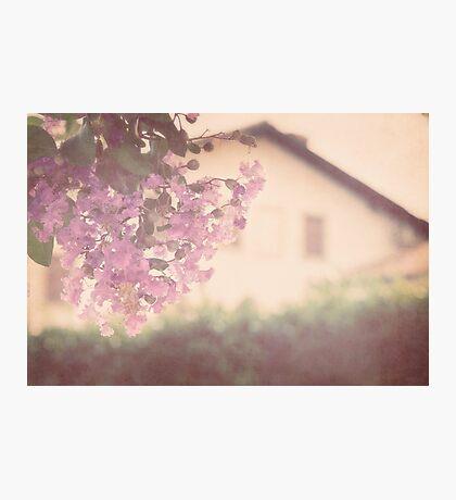 Italian Floral Photographic Print