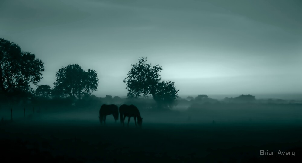 Horses in the mist by Brian Avery