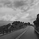 Highway Down by Richard G Witham