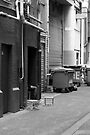 Alleyway Inhabitants by Vince Russell