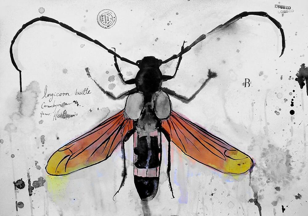 bug (2) by Loui  Jover