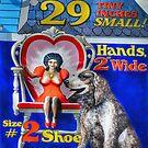 Twenty Nine Inches Sign by Ned Elliott