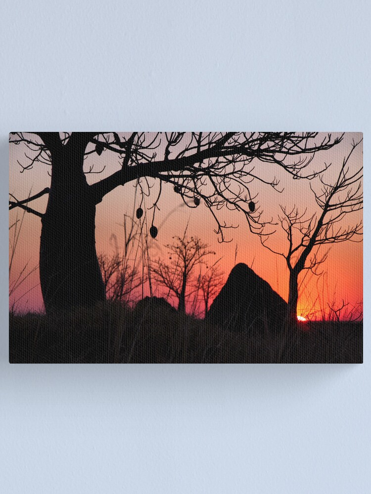 Alternate view of Boab and termite mound sunset Canvas Print