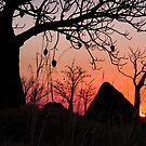 Boab and termite mound sunset by Robyn Lakeman