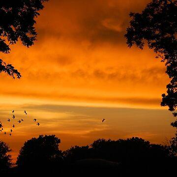 Sunset Storms by ArkansasLisa