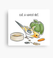 Eat a Varied Diet Canvas Print