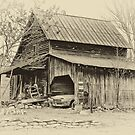 Old Barn by Jane Best