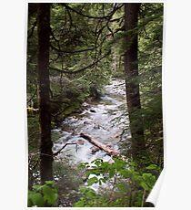 Denny Creek, Washington Poster