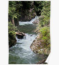 Franklin Falls, Denny Creek, Snoqualmie Forest Poster