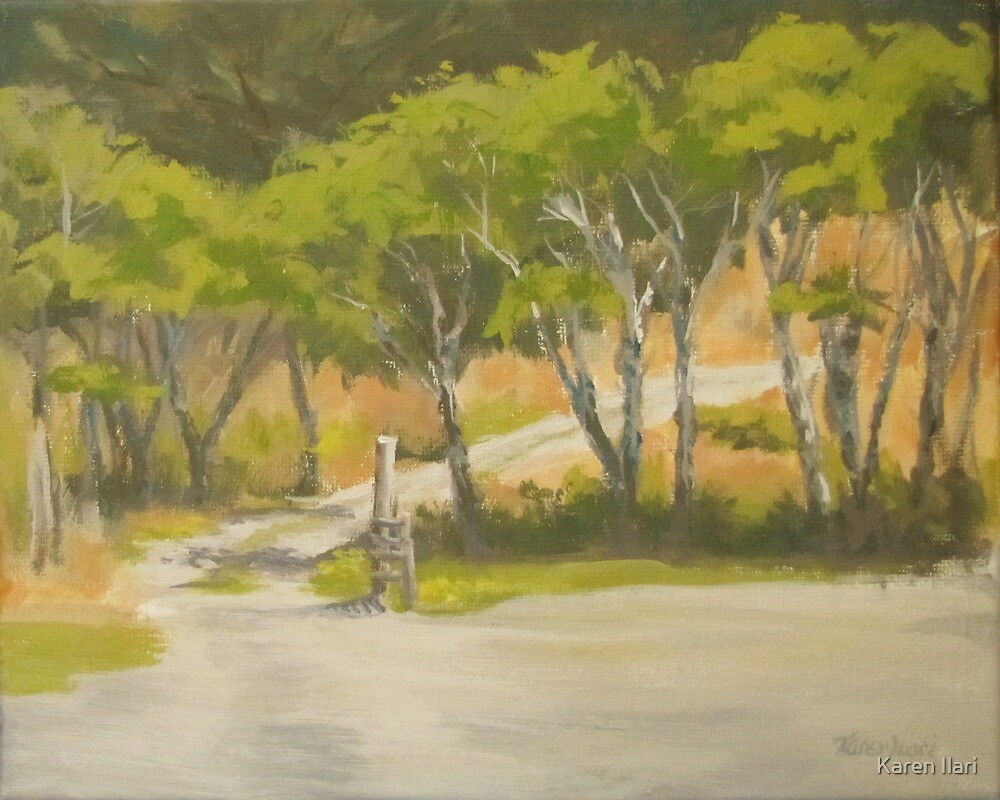 Road to the Cabin by Karen Ilari