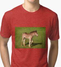 Foal Tri-blend T-Shirt