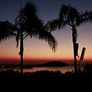 Dawn @ Coffs Harbour NSW Australia by maysun