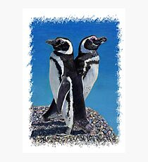 Adorable Penguin Greeting Card Photographic Print