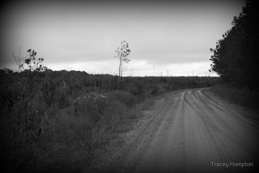 The Road Untraveled by Tracey Hampton