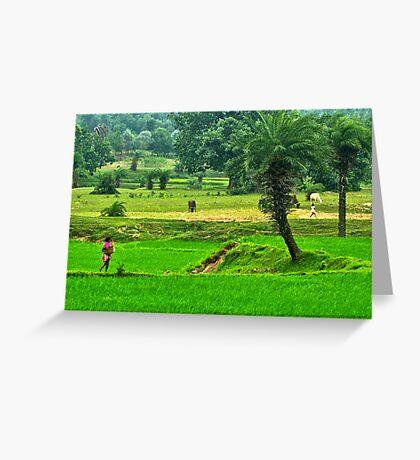 Incredible India-3/2011 Greeting Card