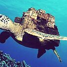 Italy On Green Sea Turtle by Ornelly Smile