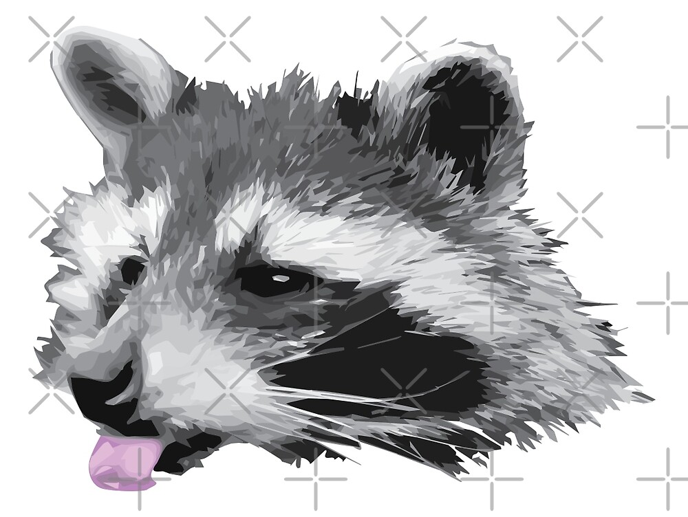 One Raccoon by TheSimpleMan