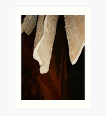 stalactites Art Print