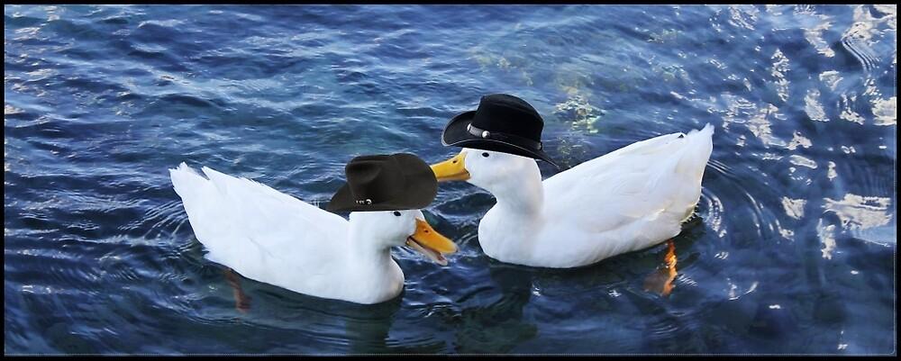 Two ducks wearing cowboy hats 2 by cow-ducks