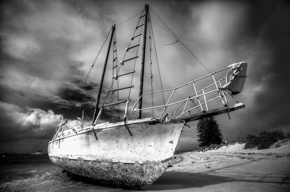 Washed ashore after a big storm by Marc Russo