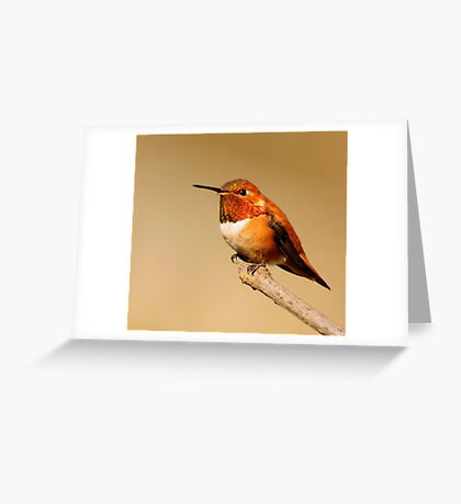 SITTING STILL Greeting Card