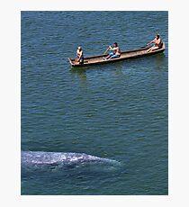 Whale Music (2) Photographic Print
