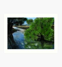 Rapid river Art Print