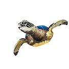 Spirit Turtles by wendish