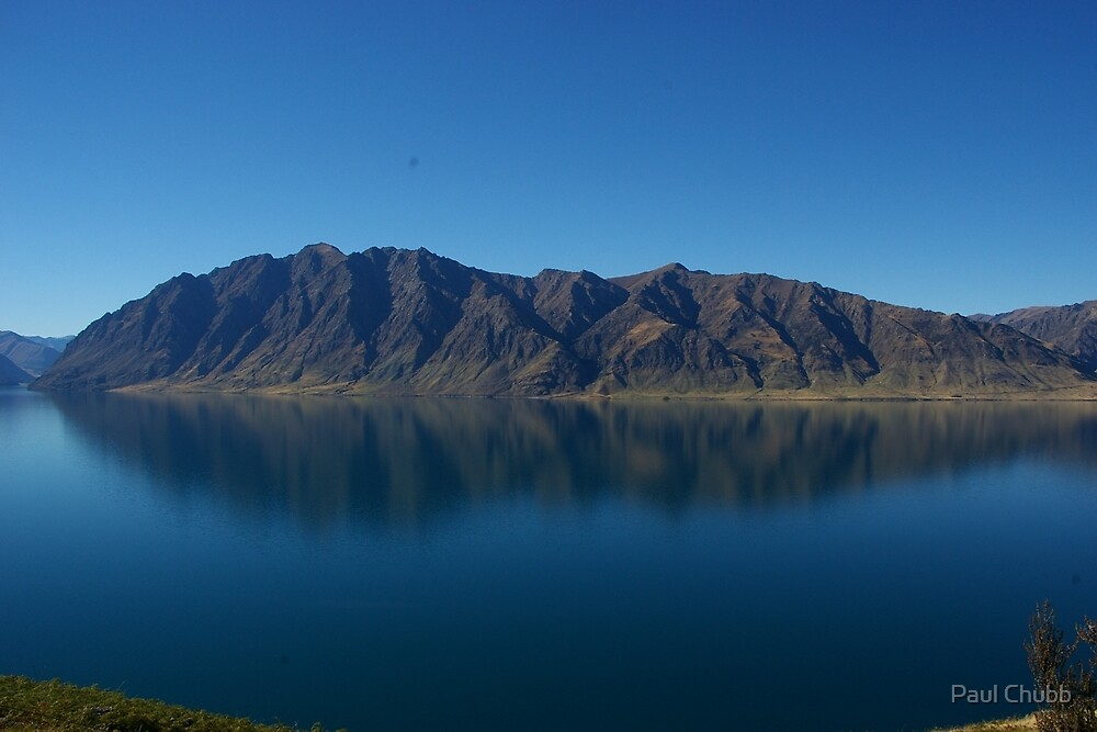 Kiwi Reflection by Paul Chubb