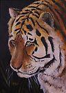 Tiger Portrait by Michael Beckett
