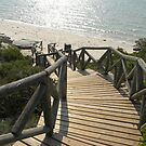 Strairway to the beach by Pieta Pieterse