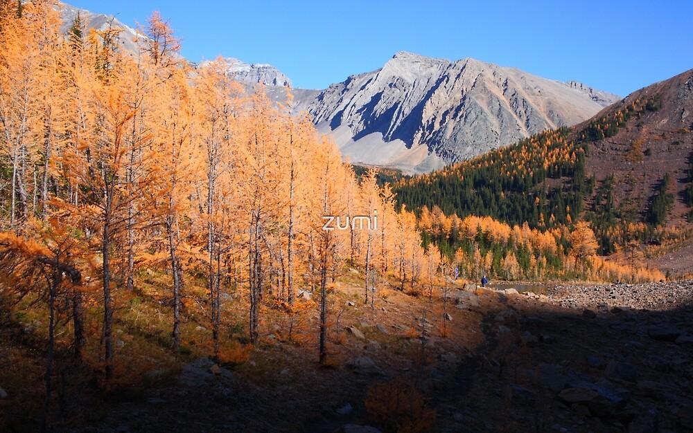 Autumnal Rockies by zumi