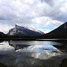 Rundle and Sulphur by Alyce Taylor