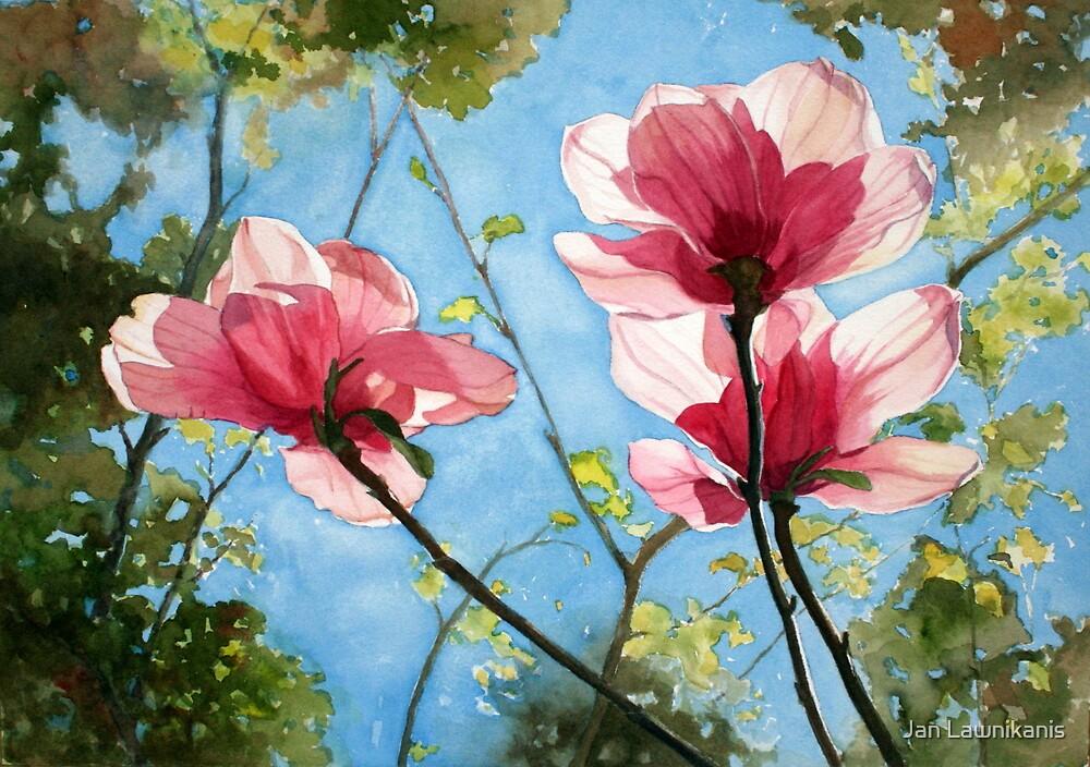 Botanicals 3 by Jan Lawnikanis